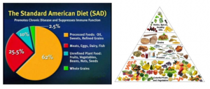 Connectable Life - Standard American Diet vs a Real Food Diet (image supplied by Health and Wellness Website)
