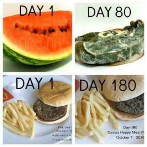 Connectable Life - real food vs processed. Real food spoils and goes bad. Image supplied on internet.
