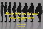Fat Exposed Part 1 Functional Medicine Practitioner