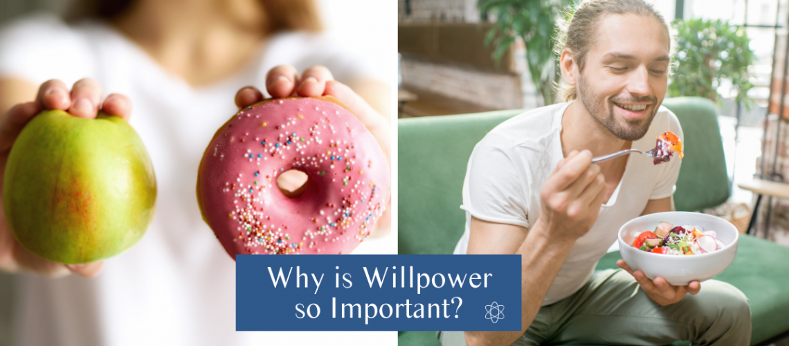 Connectable Life - Why is willpower so important?
