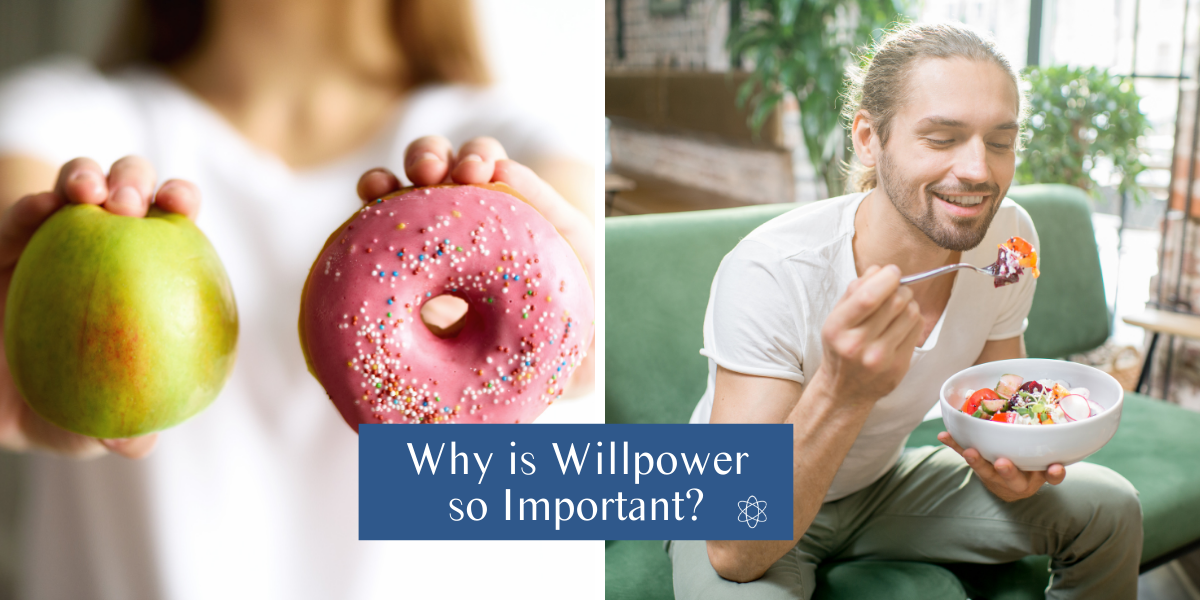 Why is willpower so important?